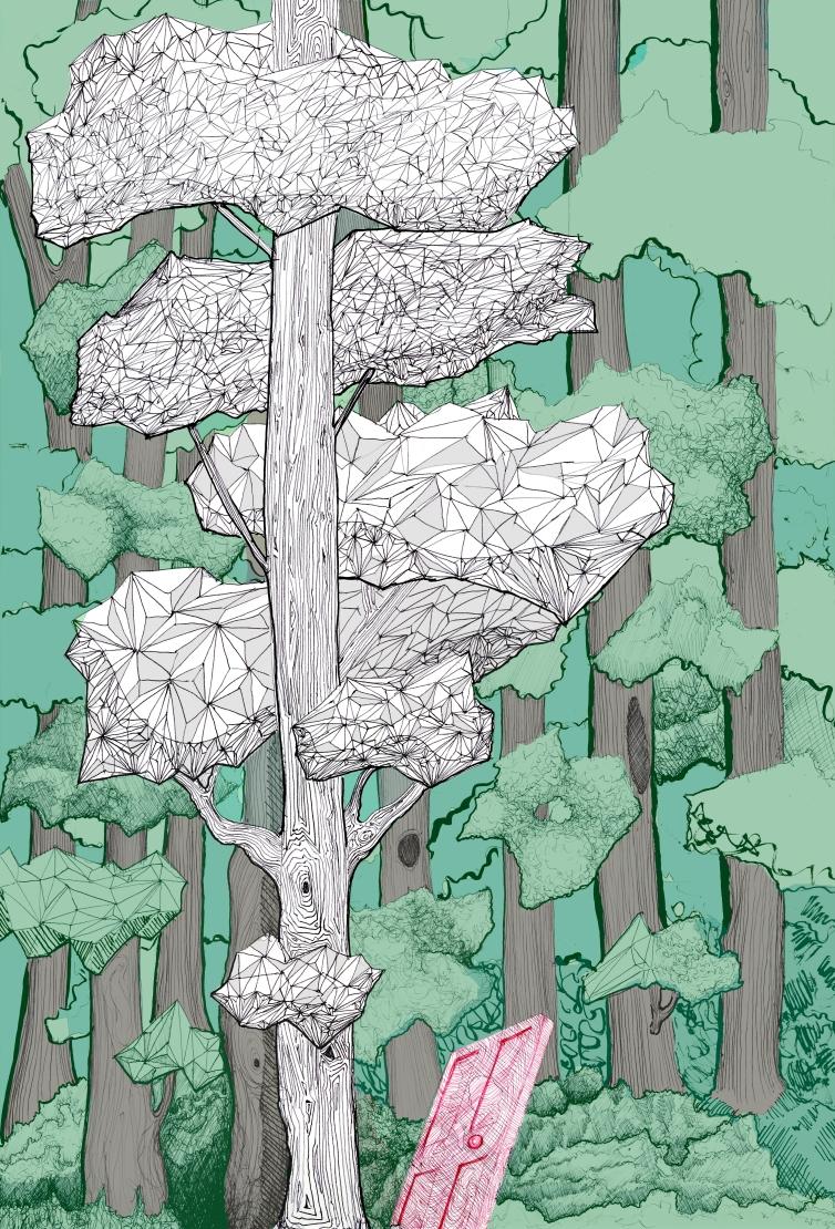bosque 1 final